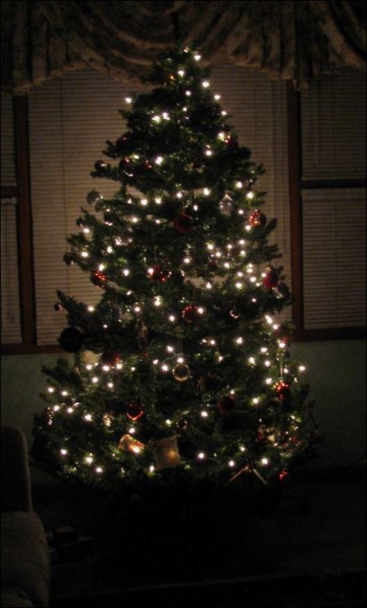 Christmas Tree lights2